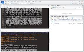 ssl publishing to an rstudio connect server with a self signed ssl