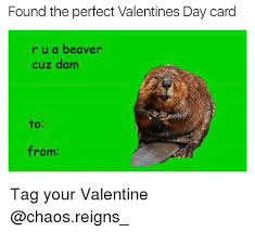 Valentines Day Meme Card - found the perfect valentines day card r u a beaver cuz dam from tag
