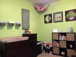 gender neutral nursery paint color u0027honeydew u0027 with owl theme it