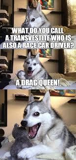 Transvestite Meme - bad pun dog meme imgflip