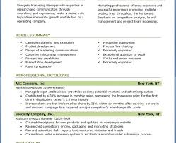 Resume Free Template Download Download Professional Resume Layout Haadyaooverbayresort Com