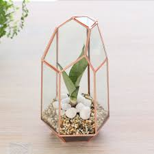 Indoor Planters by Tall Geometric Glass Terrarium Indoor Planter Copper Home