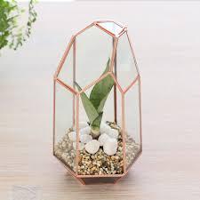 tall geometric glass terrarium indoor planter copper home