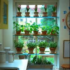 grow lights for indoor herb garden indoor herb garden light suehirofc