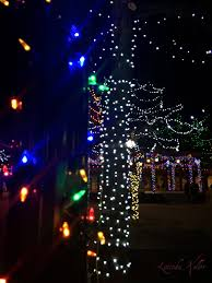 Twinkling Christmas Tree Lights Canada by Cobalt Violet Merry Christmas Twinkling Lights In Santa Fe And