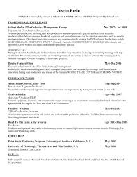 Ceo Resume Examples by Best Ceo Resumes Virtren Com