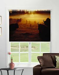 printed photo blinds