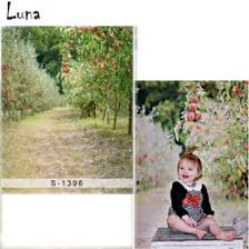 Online Fruit Trees For Sale - painting fruit trees online painting fruit trees for sale