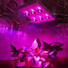 commercial led grow lights best 1200w cob reflector led grow lights full spectrum for