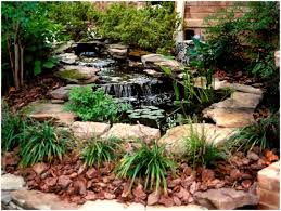 backyards fascinating backyard fish pond waterfall koi water