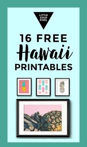 Hawaiian Themed Bedroom Ideas Best 25 Hawaiian Decor Ideas On Pinterest Caribbean Decor
