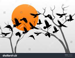 dark crows pack flying over scary stock vector 134490749