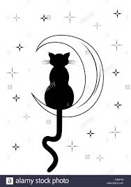 black cat with sitting on the moon among starry sky