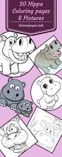 bulky mammals 30 hippopotamus coloring pages u0026 hippo cliparts