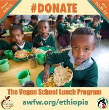School Lunch Meme - new ethiopian school lunch program please share