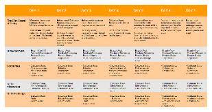 diet plans u2013 healing is essential