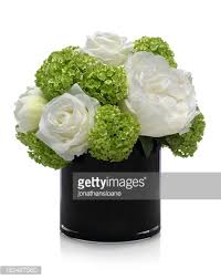 White Hydrangea Bouquet Green And White Roses With Hydrangea Bouquet On White Background