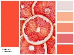 Pantone Color Scheme 13 Best палитры 2017 Images On Pinterest Pantone Color