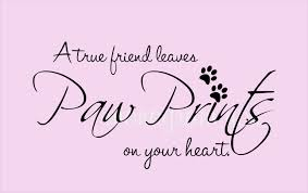 True Love Images With Quotes by Unique Quotes About Pets 91 On Inspirational Love Quotes With