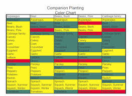 Companion Planting Garden Layout Companion Planting My Square Foot Garden