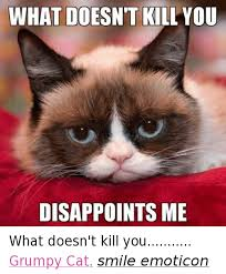 25 Best Memes About Grumpy - 25 best memes about what doesnt kill you disappoints me what