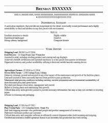 Professional Summary Resume Examples by Best Farmer Resume Example Livecareer