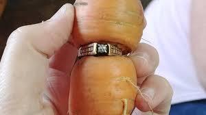 an welcher kommt der verlobungsring verlorener verlobungsring in möhre eingewachsen
