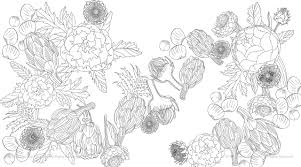vegetable coloring pages best photo gallery for website vegetable