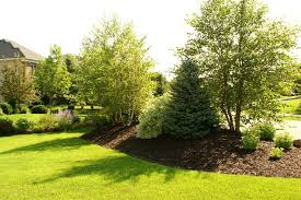 How To Make Backyard More Private 10 Ways To Make Your Yard Look Professionally Landscaped Yards