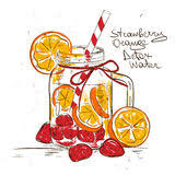 sketch of a strawberry stock images image 28021754