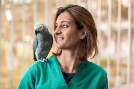 do birds need an annual vet visit