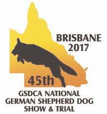 australian shepherd club qld 2017 national u2013 german shepherd dog club of queensland