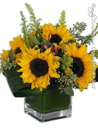 sunflower delivery just sunflowers delivery orange county ca