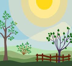 small backyard landscape design ideas