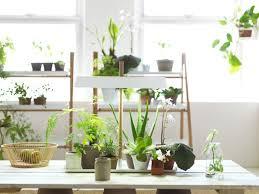 ikea plant stand ship design