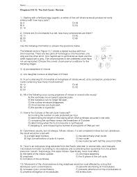 18 best images of cell cycle worksheet cell cycle worksheet
