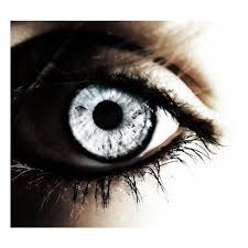 25 halloween eye contacts ideas contacts