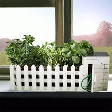 giardini interni casa mini giardino da interni con semi assortiti troppotogo