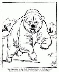 20 free printable cute animal coloring pages everfreecoloring