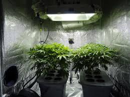 what is the best lighting for growing indoor growroom