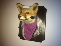 Taxidermy Fox Meme - memebase taxidermy all your memes in our base funny memes