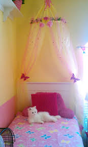 girls will have a canopy each in white love the butterflies room ideas