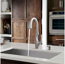 stainless steel pull kitchen faucet stainless steel indira 1 handle pull kitchen faucet f 529