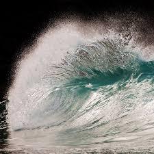 Frozen Waves Feral Intelligence Blog Archive Frozen Waves