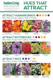 best 25 flowers garden ideas on pinterest garden ideas for