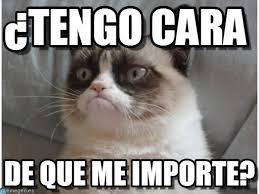 Gato Meme - tengo cara gato enojado meme on memegen