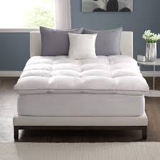 Mattress On Floor Design Ideas by Bedroom Feather Bed Topper With Wooden Floor And Grey Wall Also