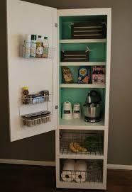 Diy Kitchen Cabinet Organizers Mobile Pantry Cabinet Diylikeaboss Hometalk