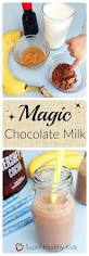 Best 25 Punch Recipes For Kids Ideas Only On Pinterest Kids by Best 25 Chocolate Milk Shakes Ideas Only On Pinterest Chocolate