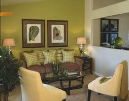 Green And Brown Living Room Decor I WILL Have One Green Wall - Green living room ideas decorating